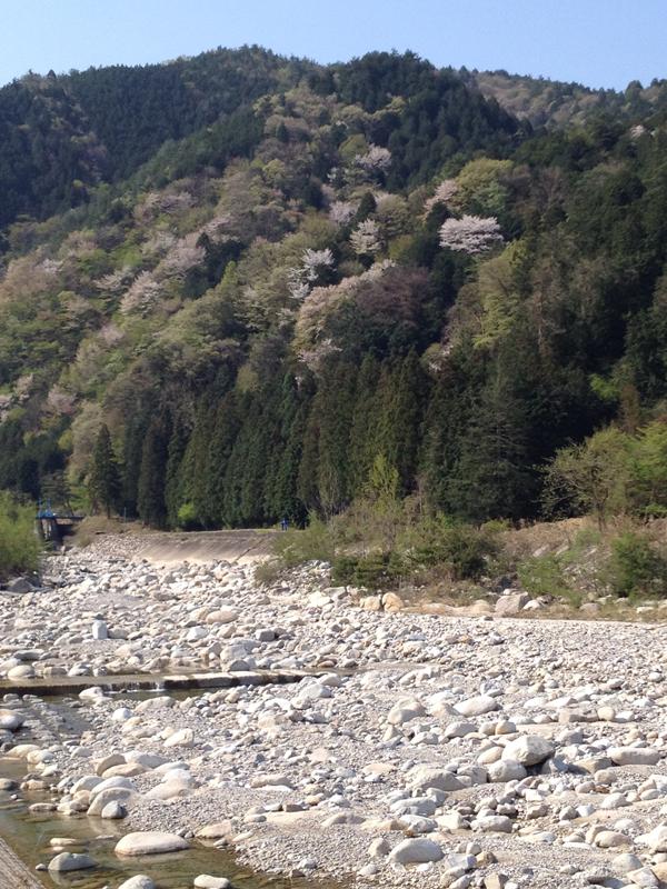 川上に向かう道