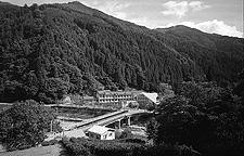 上村中学校