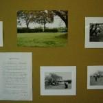 低学年教室の展示